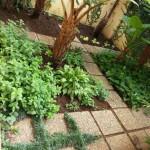 006 03 JULIE 2014 Landscaping installation FB