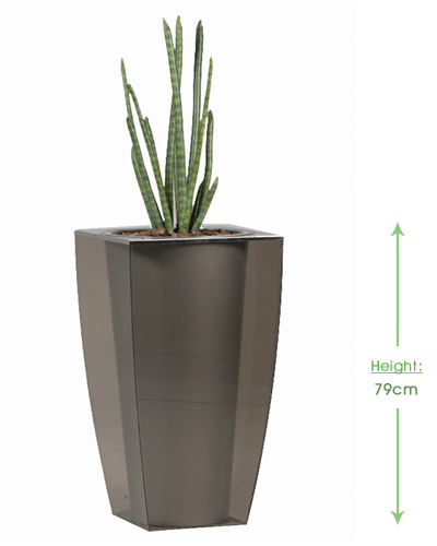 Perspex E-cone short Height: 79cm