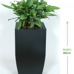 32cm curved planter Height: 80cm